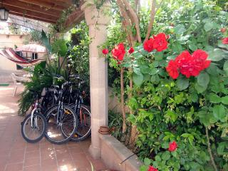 Ground floor in Palma Mallorca - Palma de Mallorca vacation rentals