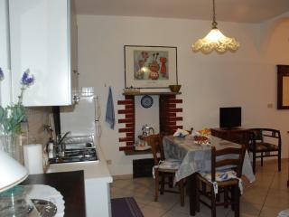 Cozy apt Turin, porta susa - Turin vacation rentals