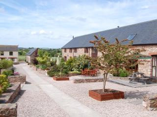 Wagtail Cottage - Ipplepen vacation rentals