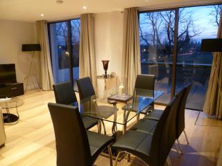 Central Cambridge Apartment - Cambridge vacation rentals