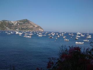 Home Holidays, Ischia Island - Forio vacation rentals