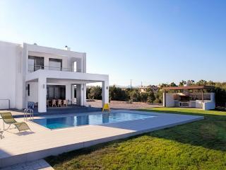 Villa Leilani Beach, Lahania - Lachania vacation rentals