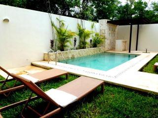 Casa Nautilus, Luxury w/private pool in Aldea Zama - Tulum vacation rentals