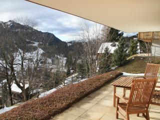 Lovely Cosy 1 Bed Apartment - Les Diablerets vacation rentals