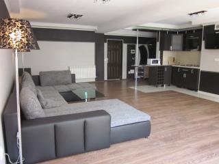 3rooms ID:9 - Chisinau vacation rentals