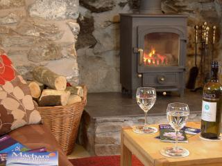 Auld Smiddy Cottage, pet friendly, views to sea! - Drummore vacation rentals