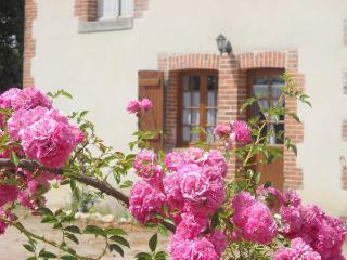 GITE LA CHEVRERIE - Mennetou-sur-cher vacation rentals