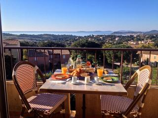 Apartment Diana - Penthouse - La Croix-Valmer vacation rentals