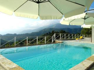 Villa Sarti - Massarosa vacation rentals
