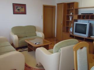 Apartment Skopje City Center - Skopje vacation rentals