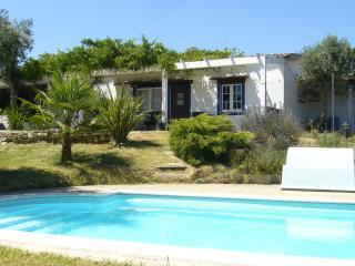 Quinta da Carvoeira B&B Pool & Garden sun terrace - Lousa vacation rentals