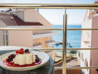 luxury seaview apartment olive okrug - Okrug Gornji vacation rentals