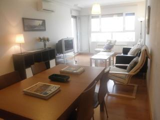 Logrono AS Apartments - Logroño vacation rentals