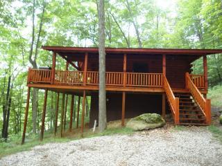 Snuggle Inn - Ohio vacation rentals