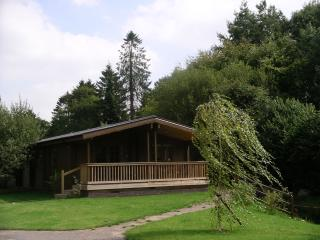 Willowbank Lodges/Heron's Nest - Pewsey vacation rentals
