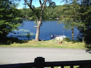Lake House with a one of a kind view in Sand lake - Sand Lake vacation rentals