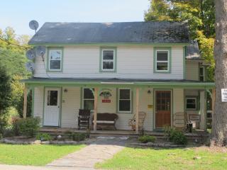 Mountain Valley Town House Lodging - Fleischmanns vacation rentals