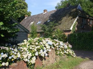 Farmhouse in Beautiful Rural Diever, Drenthe - Com - Diever vacation rentals