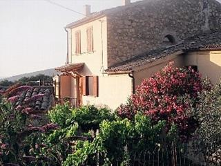 Splendor in the Green Heart of Umbria - Tenaglie vacation rentals