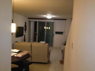 Luxury Penthouse Apartment - Cabo Rojo vacation rentals