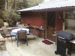 Nashville's  Cozy Cottage - Chapmansboro vacation rentals