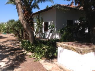Villa South East Sicily near sea - Caltagirone vacation rentals