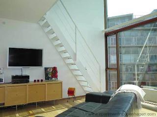 Ørestad - Vm-huset By B.i.g Architects - 581 - Denmark vacation rentals