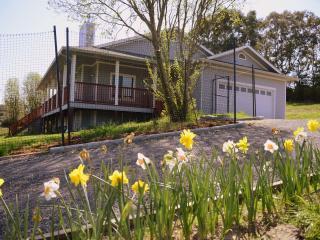 Cumbria Guest House Sebastopol - Sebastopol vacation rentals
