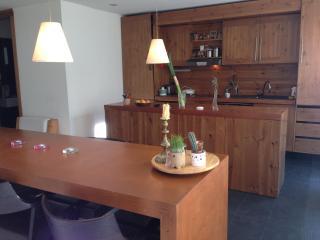 Belgrade apartment Vracar near St. Sava church - Belgrade vacation rentals