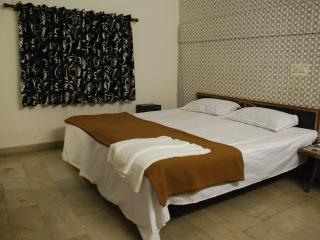 At the heart of city in Connaught place - New Delhi vacation rentals
