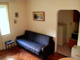Well Located, Affordable price apartment - Belgrade vacation rentals