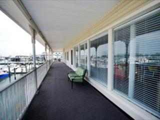 Dog Friendly at South Jersey Marina 122784 - Image 1 - Cape May - rentals