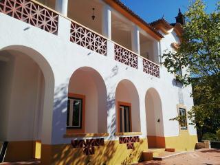 Casal Adelia, in the centre of Portugal! - Proenca-a-Nova vacation rentals