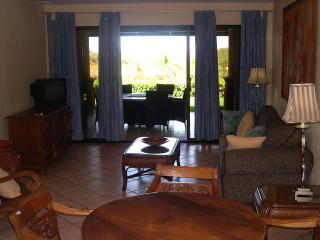 El Diria, #512 - Villa Tolosa HP070 - Tamarindo vacation rentals