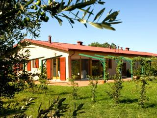 Sunny 3 bedroom Tuscan apartment surrounded by internationally renowned vineyards, shared pool, private garden - Donoratico vacation rentals