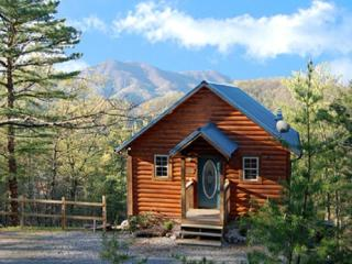 Ain't No Mountain High Enough - Wears Valley vacation rentals