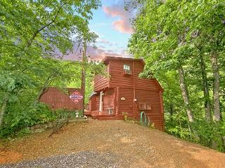 Nikhia's Loft - Sevierville vacation rentals