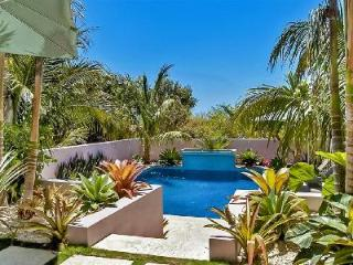Banyan Tree - Magnificent estate boasts panoramic beach and bay views, fire pit & plunge pool - Harbour Island vacation rentals
