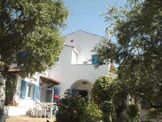 Villa Mirasole with private beach - Image 1 - Maratea - rentals