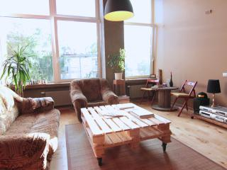 Spacious apartment close to Old Town - Lithuania vacation rentals