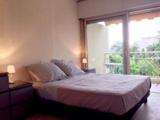 2 Bedroom Rental with a Balcony and Parking, Near the Beach - Cannes vacation rentals