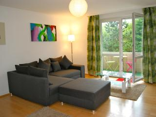 Apartment Ernst - Baden-Baden vacation rentals