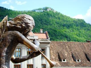 Coziness & Luxury in Piata Sfatului - Brasov vacation rentals