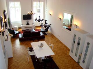 Designer Apt in Historic Building - Brasov vacation rentals