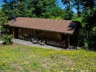 2BR home w/private hot tub; deck & ocean views - Elk vacation rentals
