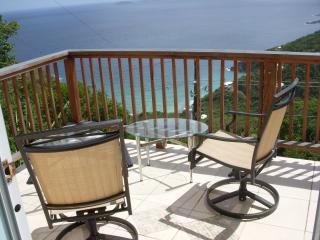 Palmarie Too Cozy Studio with Fabulous Ocean View - Saint Thomas vacation rentals