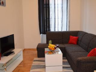 Time inn apartment - Zagreb vacation rentals