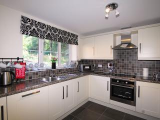 Forest view - Cinderford vacation rentals