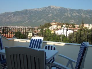 Paulina Apartment A2 - Hisaronu vacation rentals