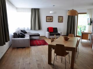 Castle Hill Apartment - Bratislava vacation rentals